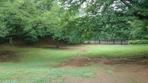 梅雨のさくら公園3