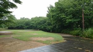 梅雨のさくら公園4