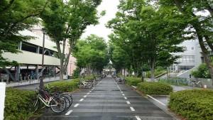 梅雨の駅前広場2